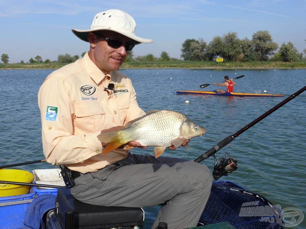 как ловить рыбу на гребном канале в ростове