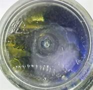 Мягкая приманка Микруха Maggot 3.8см 10шт/уп Сыр Р аква/Жёлтый